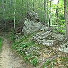 Lumber Ridge Trail GSMNP