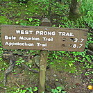West Prong Trail GSMNP by P-Train in Day Hikers