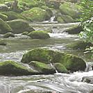 West Prong Trail GSMNP