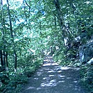 Mostly Backpackers campsite May 2013 by no-name in Trail & Blazes in New Jersey & New York
