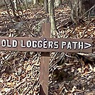 Old Loggers Path by no-name in Other Trails