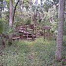 Tosohatchee Wildlife Management Area, Florida Trail