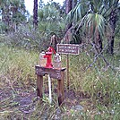 Tosohatchee Wildlife Management Area, Florida Trail