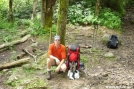 AT near Mt Cammerer GSMNP by silvereagle in Section Hikers
