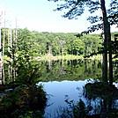 Wilcox Mt. Beaver Pond