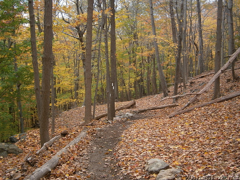 New Trail Constructed by The Long Distance Trail Crew and helpers