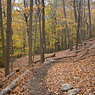 New Trail Constructed by The Long Distance Trail Crew and helpers by coach lou in Trail & Blazes in New Jersey & New York