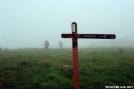 Rice field fog by ffstenger in Trail & Blazes in Virginia & West Virginia