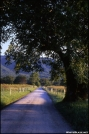 Cades Cove, Great Smoky Mtns NP