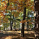 Harriman State Park by BlackCloud in Trail & Blazes in New Jersey & New York