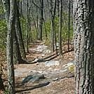 Trail by misa430 in Trail & Blazes in Virginia & West Virginia