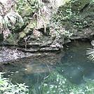 Big Oak Trail, Suwanee River State Park