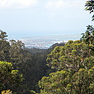 AT Prep: Aiea Loop Trail, Part II by DonnaVO in Other Trails