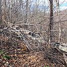 Corbim Hollow trail. by Kingbee in Trail & Blazes in Virginia & West Virginia