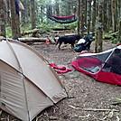 250291 10152132285705187 507268690 n by Pottsalot in Hammock camping