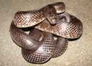 Black Rat by Herpn in Snakes