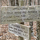 A T sign at the gregory bald trail junction by gollwoods in Trail & Blazes in North Carolina & Tennessee