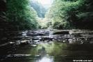 Virginia Stream by Tractor in Views in Virginia & West Virginia