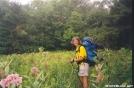 Meadow in Vermont by DebW in Flowers