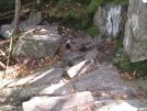 Fishin\' Jimmy Trail