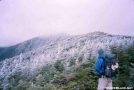 Hikerhead on Franconia Ridge by DebW in Views in New Hampshire