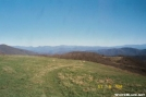 AT at Max Patch by trailfinder in Trail & Blazes in North Carolina & Tennessee