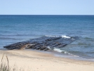 Skeleton Beach by Happy Feet in North Country NST