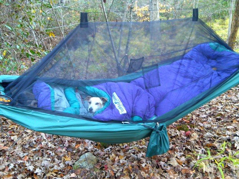 Hammock Camping Whiteblaze Gallery