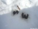 309N winter