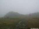 Wilburn Ridge in the fog by BackpackingMonkey in Trail & Blazes in Virginia & West Virginia