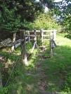 Horse Stile entering Woods by Kerosene in Trail & Blazes in Virginia & West Virginia