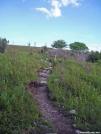 Climbing to upper meadow atop Stone Mountain by Kerosene in Trail & Blazes in Virginia & West Virginia