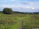 Upper Meadow of Stone Mountain by Kerosene in Views in Virginia & West Virginia