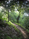 Cruisin' Trail