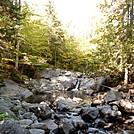 Vaughn SStream Cascades