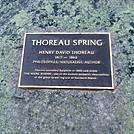 Thoreau Spring Plaque by Kerosene in Trail & Blazes in Maine