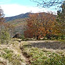 Spence Field by Kerosene in Views in North Carolina & Tennessee