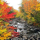 Brilliant Fall Colors by Kerosene in Views in Maine
