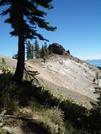 Pct/tahoe Rim Trail Near Barker Pass by Kerosene in Pacific Crest Trail