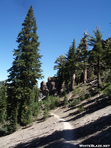 Pct/tahoe Rim Trail Near Barker Pass