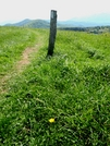 Max Patch by Kerosene in Trail & Blazes in North Carolina & Tennessee