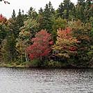 Ramshackle Shack on Surplus Pond by Kerosene in Views in Maine