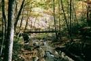Laurel Fork Footbridge