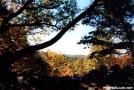 Shenendoah Valley by Kerosene in Views in Virginia & West Virginia
