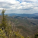 Apr 1, 2011 View from Albert Mountain (Mile 98) by MaggieMaeFlower in Views in Georgia