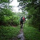 Leaving Lewis Fork Wilderness Area