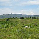 Grayson Highlands by Pumba in Members gallery
