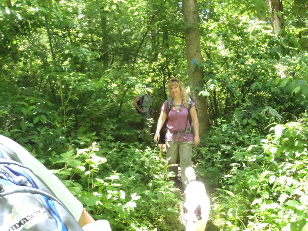 hike hacketstown nj susan