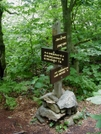 Nh Trail by Jim Lemire in Other Trails