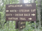 Bartram Trail Sign by Youngblood in Sign Gallery